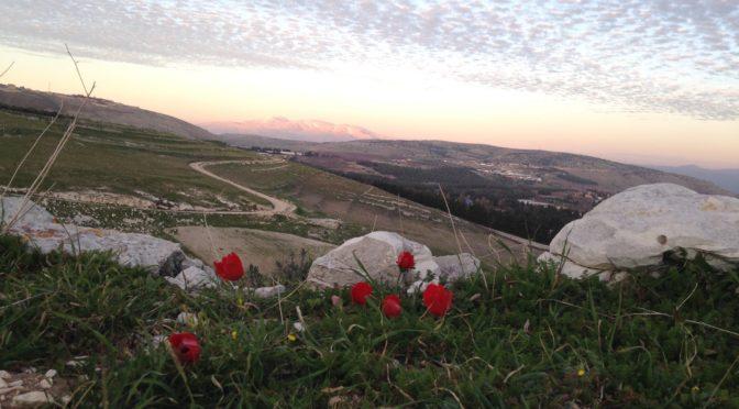 Lebanon, Syria, Palestine: Triangle Of Triumph